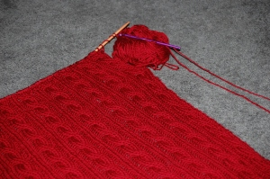 red-blanket-006