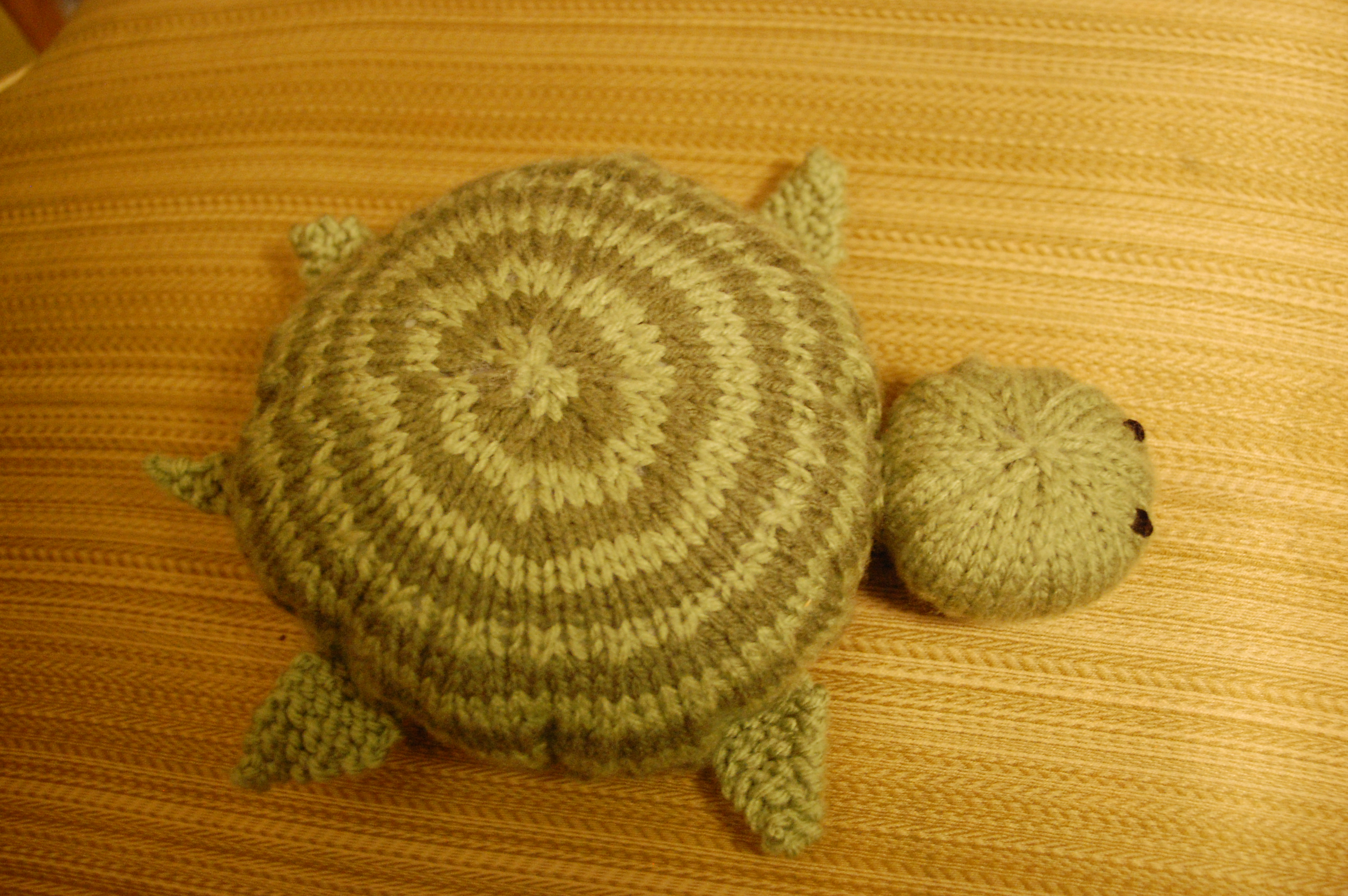 Dylan\'s Turtle | Knittybutton