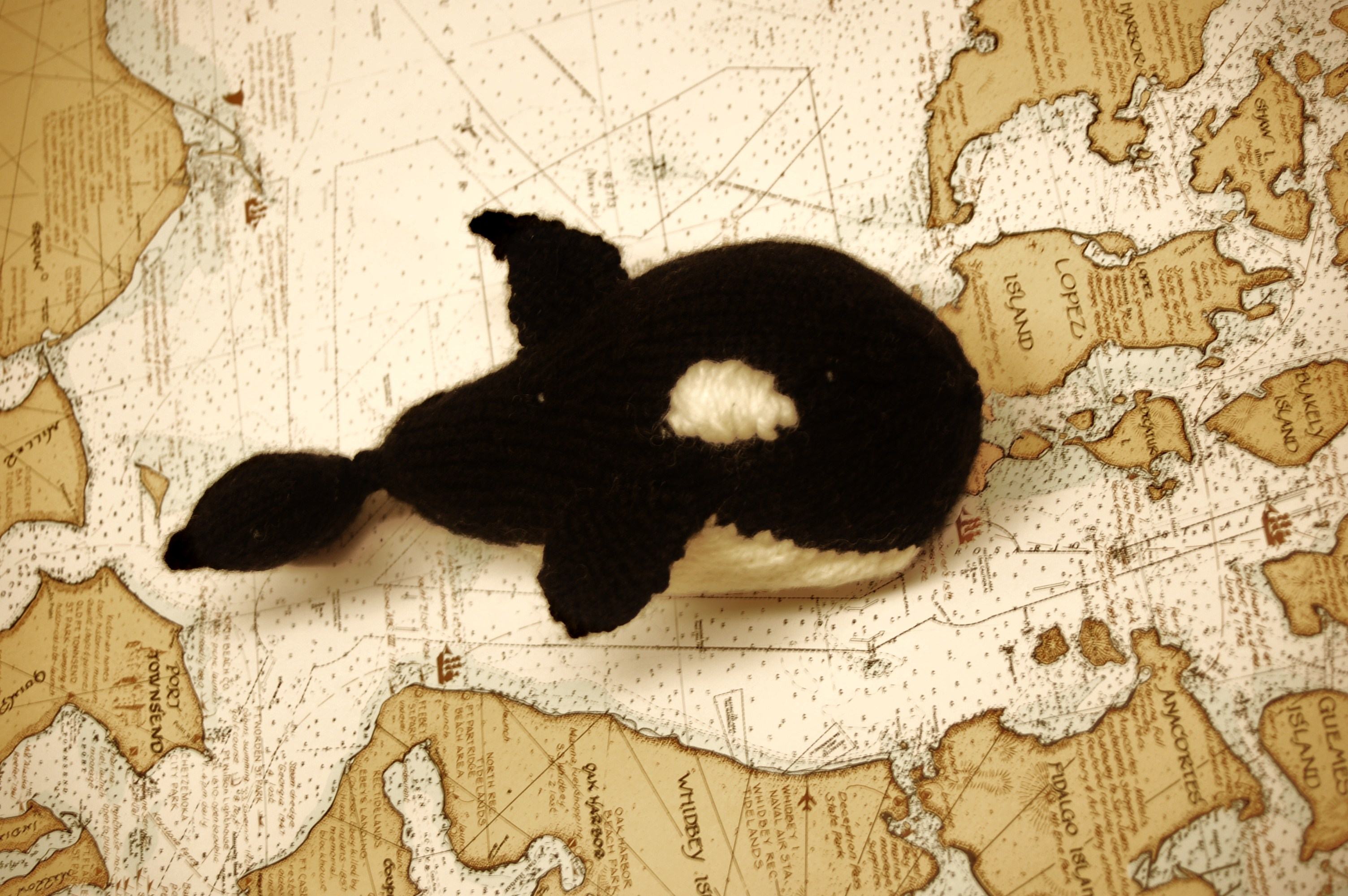 Orca Whale | Knittybutton